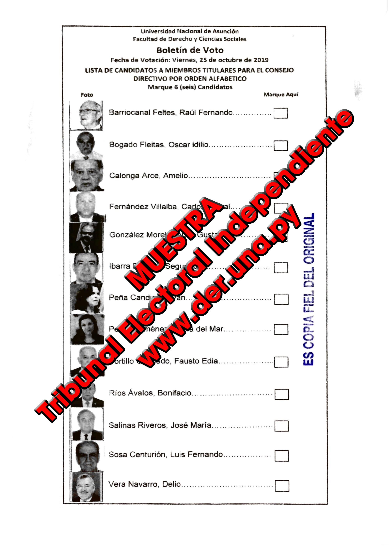 Lista de candidatos a Miembros Titulares ante el Consejo Directivo