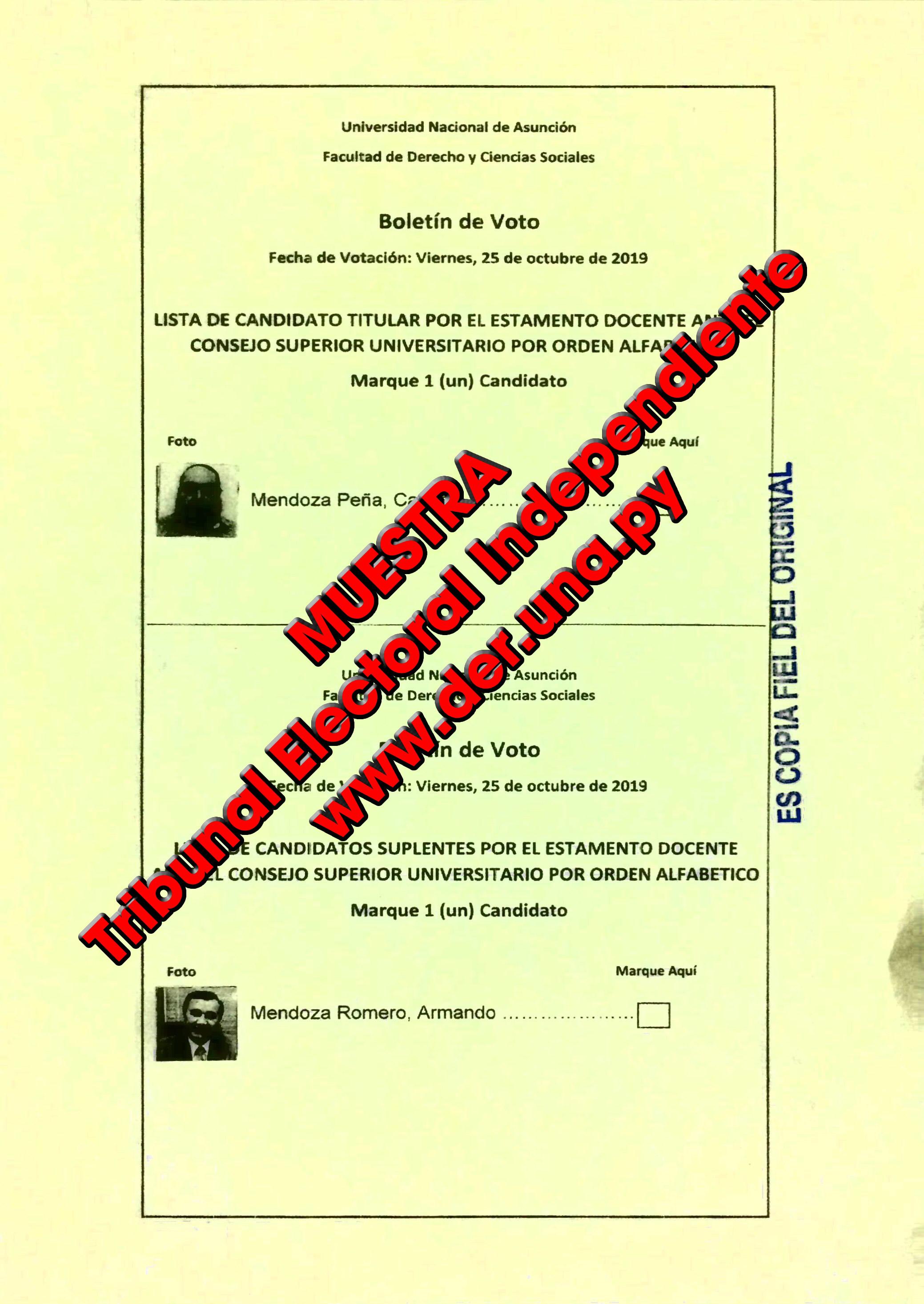 Lista de candidatos ante el Tribunal Electoral Independiente (TEI)